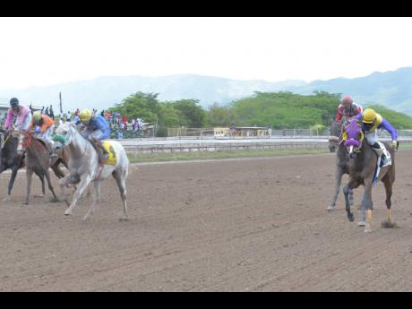 Omar Walker aboard UNCLE VINNIE (right) getting the better of Sotomayor (left) ridden by Anthony Thomas.